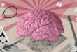 مجسم للدماغ