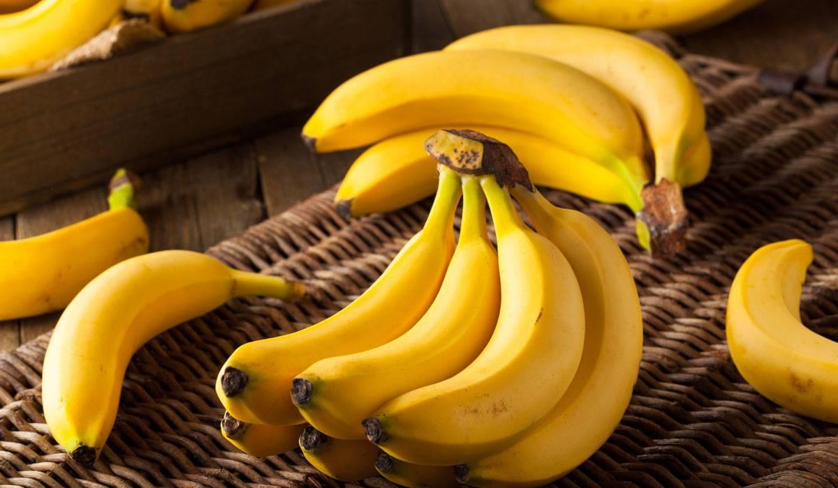 """الموز يُعرف بـ """"فاكهة الفلاسفة"""" وله عديد الفوائد"""