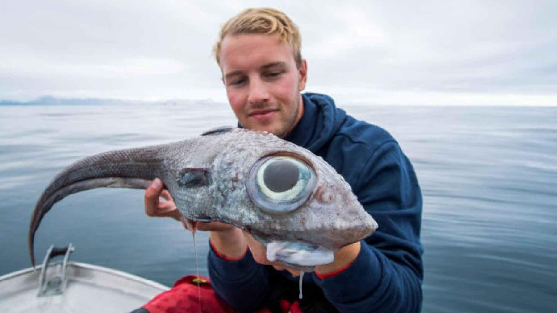 الصياد مع السمكة الغريبة