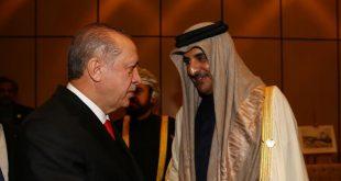 تعززت العلاقات الاقتصادية بين تركيا وقطر منذ بداية الأزمة الخليجية