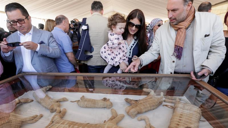 صورة صور: متحف كامل.. مصر تكتشف مومياوات حيوانية من أشبال الأسد والتماسيح والقطط