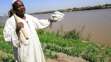 تتخوف القاهرة من تأثير سلبي على تدفق حصتها السنوية جراء سد النهضة