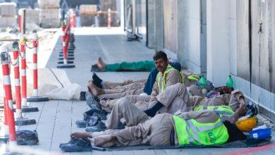 صورة أزمة أجور العمال في الإمارات تدفعهم للمغادرة