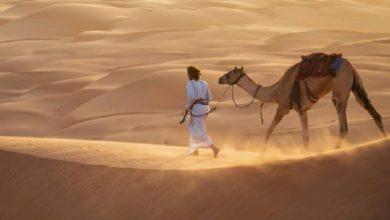 Photo of الكويت وقطر والسعودية تسجل أعلى حرارة على الكوكب