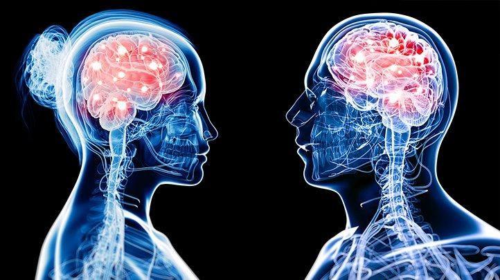 داغ النساء أصغر بأربع سنوات من دماغ الرجال بيولوجيًا