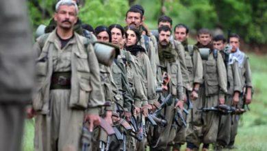 صورة مصدر: الإمارات تدعم تنظيم PKK استخباريًا