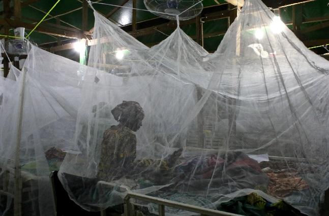 ثلثي سكان اليمن يسكنون في مناطق موبوءة بمرض الملاريا