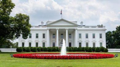 بايدن يختار هاريس لانتخابات الرئاسة الأمريكية