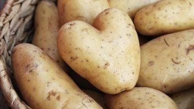 صورة ماء البطاطس لمعالجة مشاكل البشرة