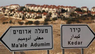 صورة تقرير: اتفاقيات التطبيع ضوء أخضر لتفشي الاستيطان الإسرائيلي