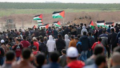 صورة برنامج يكشف تحالفات عربية إسرائيلية لضرب المقاومة الفلسطينية