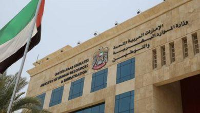 صورة بدء تنفيذ إجراءات مساواة أجور النساء والرجال في القطاع الخاص في الإمارات