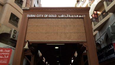 """صورة بسبب """"نهبه"""" من إفريقيا.. مطالبات بمقاطعة مؤتمر الذهب في دبي"""