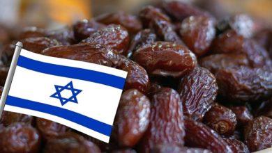 التمر الإسرائيلي