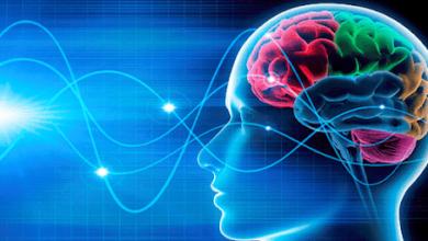 """الخلايا الزمنية توصلت دراسة جديدة إلى أنه يمكننا تذكر بعض التجارب بوضوح كما لو كنا نشاهد فيلما بفضل """"الخلايا الزمنية"""" في أدمغتنا التي تفهرس ذكرياتنا بترتيب زمني."""