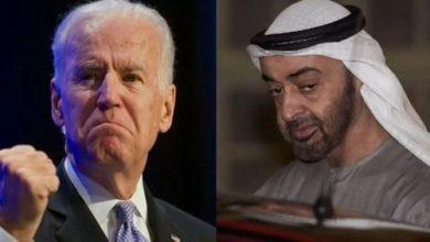 الأسلحة في الإمارات