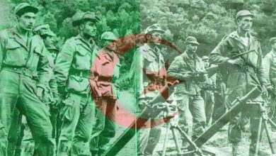 الاحتلال الفرنسي للجزائر لا يُقارن بأي احتلال آخر