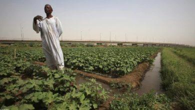 ملء سد النهضة يهدد نصف سكان السودان