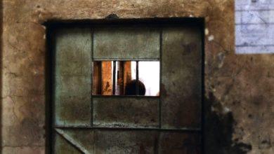 خبيرة أممية تطالب بإطلاق سراح 3 حقوقيين إماراتيين