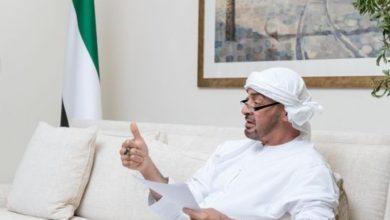 الإمارات تخفف التدخلات في النزاعات الخارجية