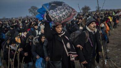 العام الماضي يسجل ارتفاعًا في أعداد اللاجئين في العالم