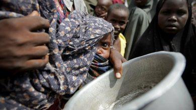 41 مليون شخص في العالم على وشك أزمة المجاعة