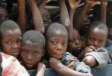 300 ألف طفل قتلوا في الصراع في نيجيريا في 12 سنة