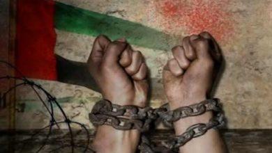 خبيرة أممية تدين السجن الطويل الأمد للإماراتيين للمدافعين عن حقوق الإنسان