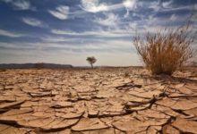 العلماء يحذرون من أن نقاط التغير المناخي أصبحت وشيكة