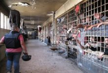 عقوبات أمريكية على سجون سورية