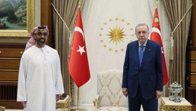 أردوغان: الإمارات قد تنفذ استثمارات واسعة في تركيا